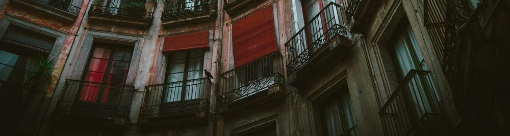 rolgordijnen voor de ramen